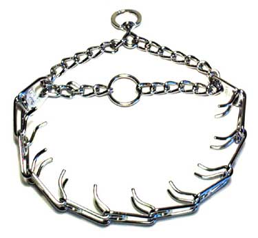 dog_prong_collar-730053 Pinch / Prong  collars  – the truth about them and their use.
