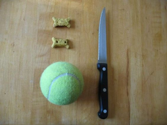 tennis-ball-puzzle-612x459 DIY Dog Toys