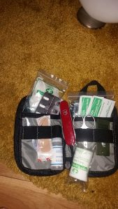 small-first-aid-dogs-169x300 First Aid Kits for Walks