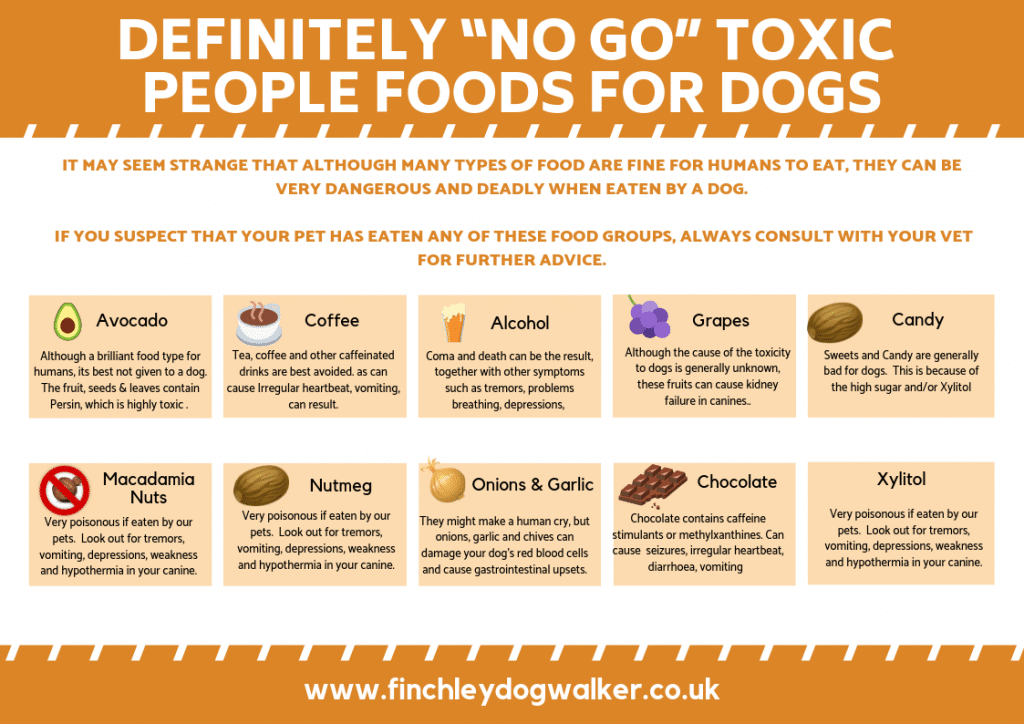 "Definitely-""No-Go""-Toxic-to-people-foods-for-dogs-1024x724 Toxic foods for dogs"