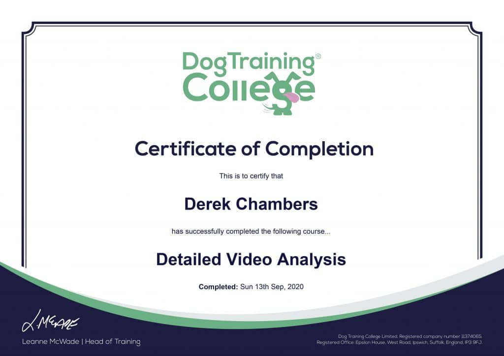 0001-1024x724 Dog Training And Pet Care certificates