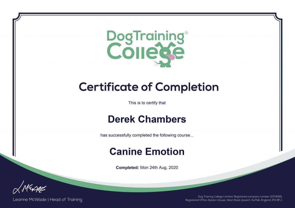 canine-emotion-1024x724 Dog Training And Pet Care certificates