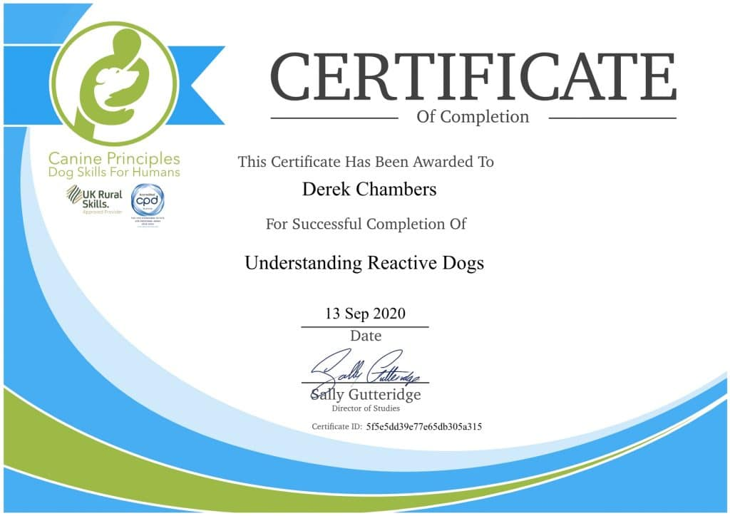 certificateunderstanding-1-1024x724 Dog Training And Pet Care certificates