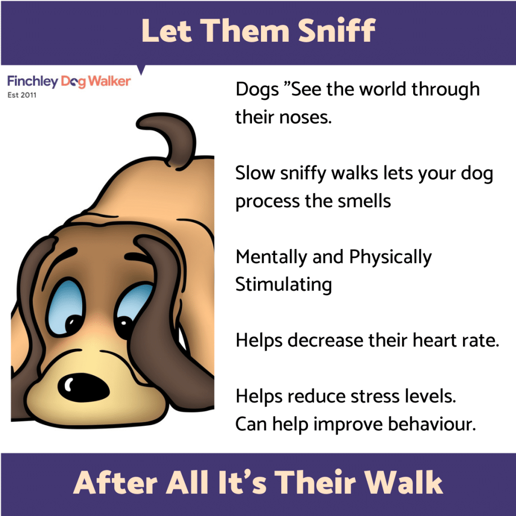 let-them-sniff-1024x1024 Canine Enrichment: Keeping Your Dog Happy